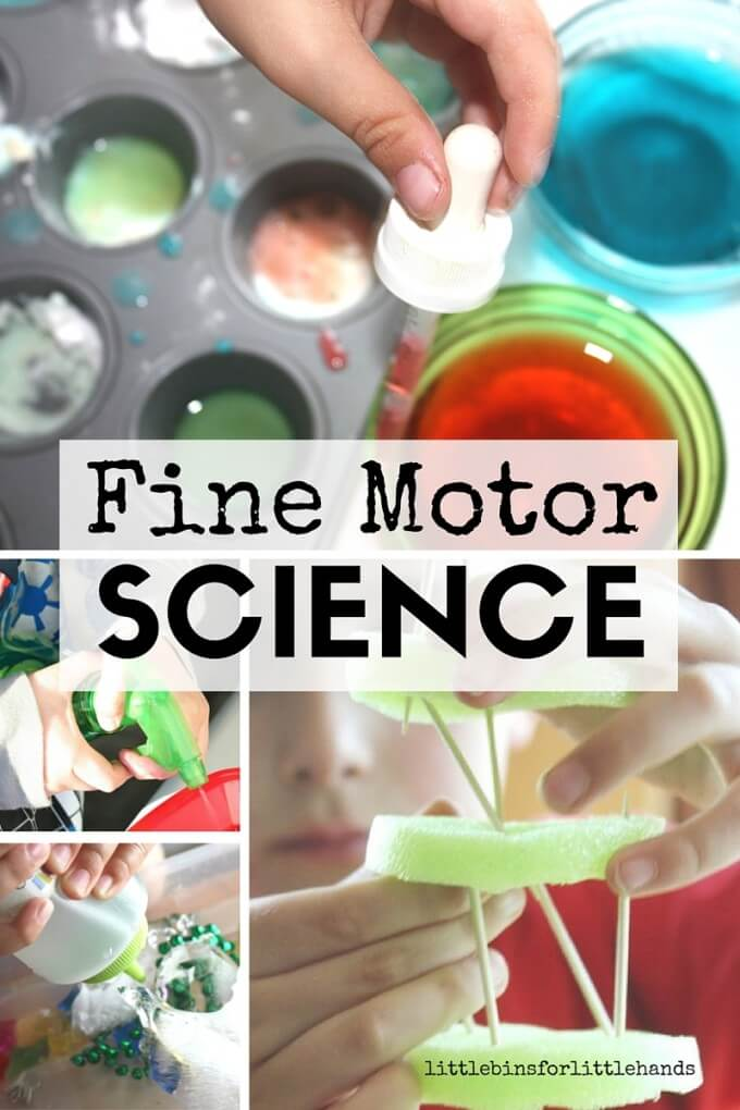 Fine Motor Science Activities for Kids