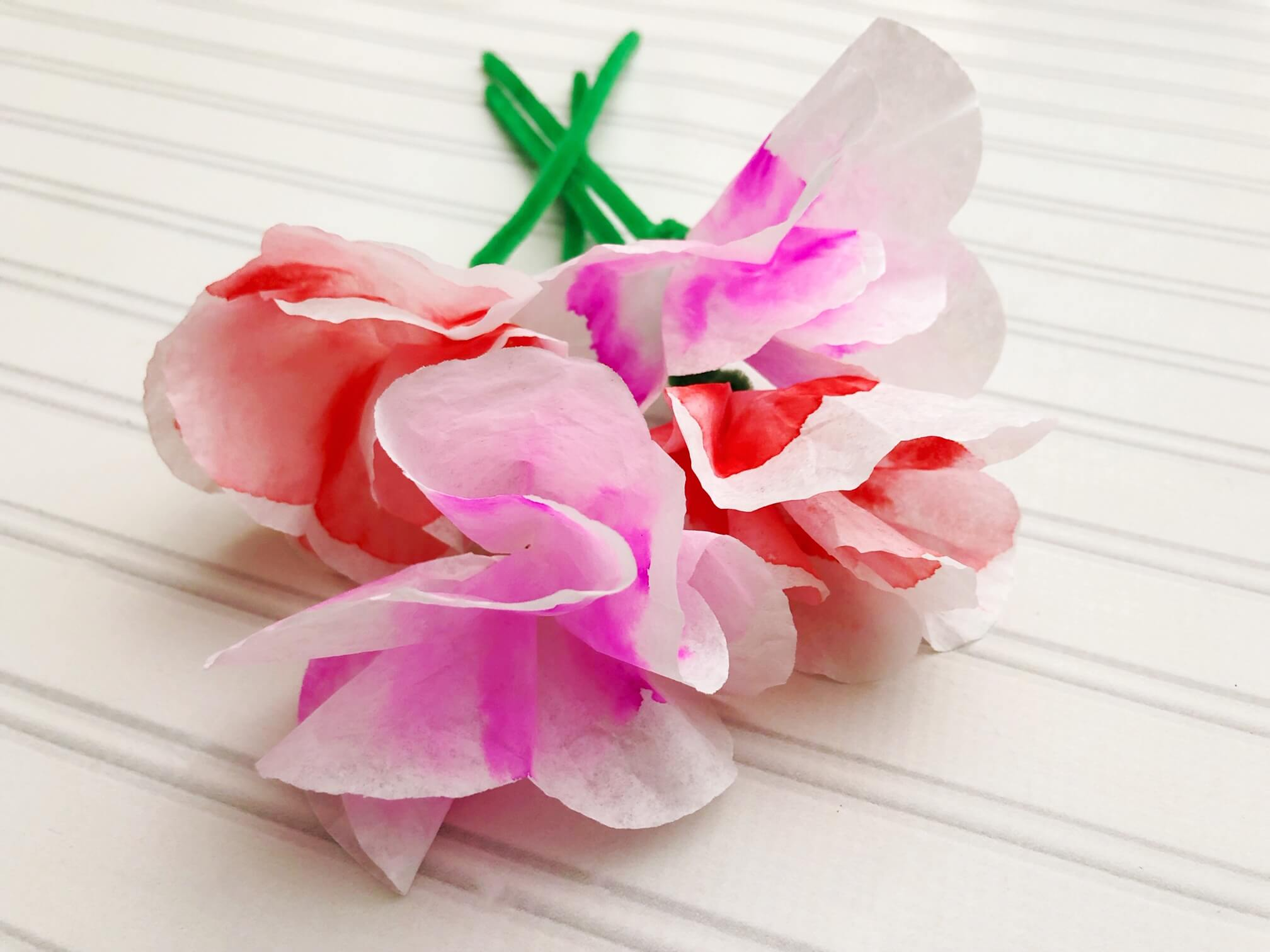 coffee filter chromatography flower bouquet