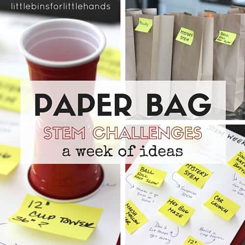 Paper bag STEM challenges week ideas for kids