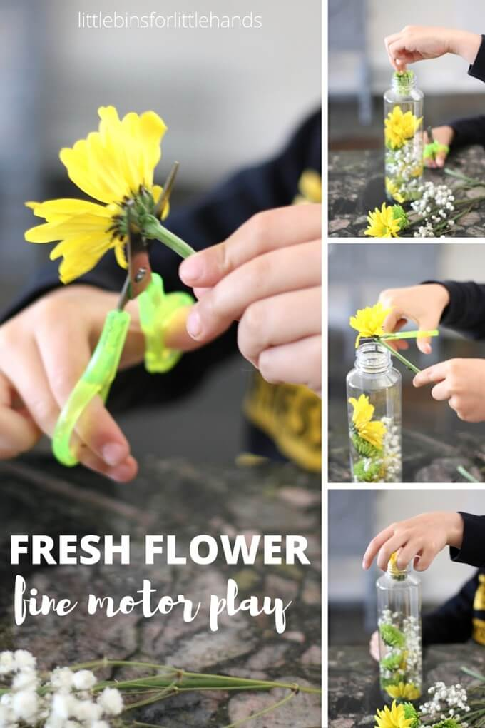 Flower Discovery Bottle with scissor skills practice and finger strengthening play