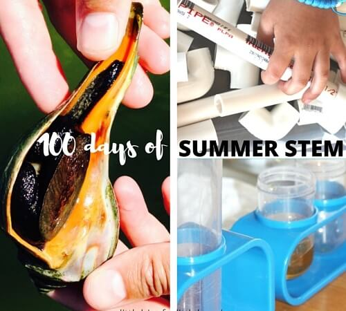 Summer STEM Activities and Science Camps for Kids