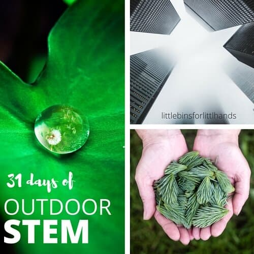 OUTDOOR STEM