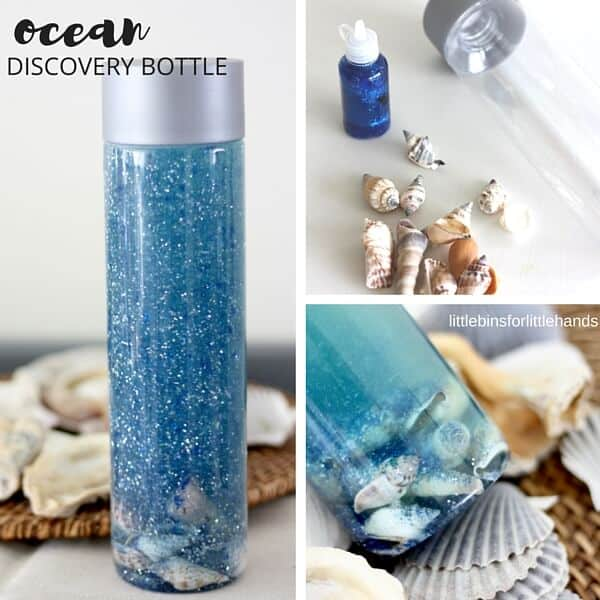 Ocean Discovery Bottle Summer Beach And Ocean Activity For