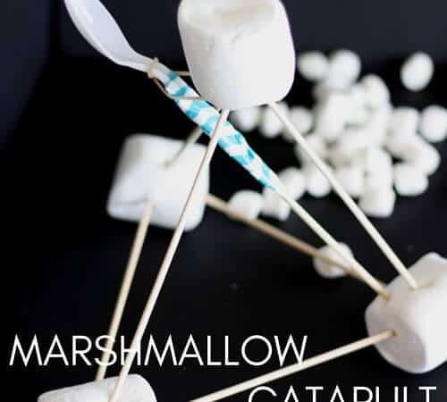 Easy Marshmallow Catapult Activity