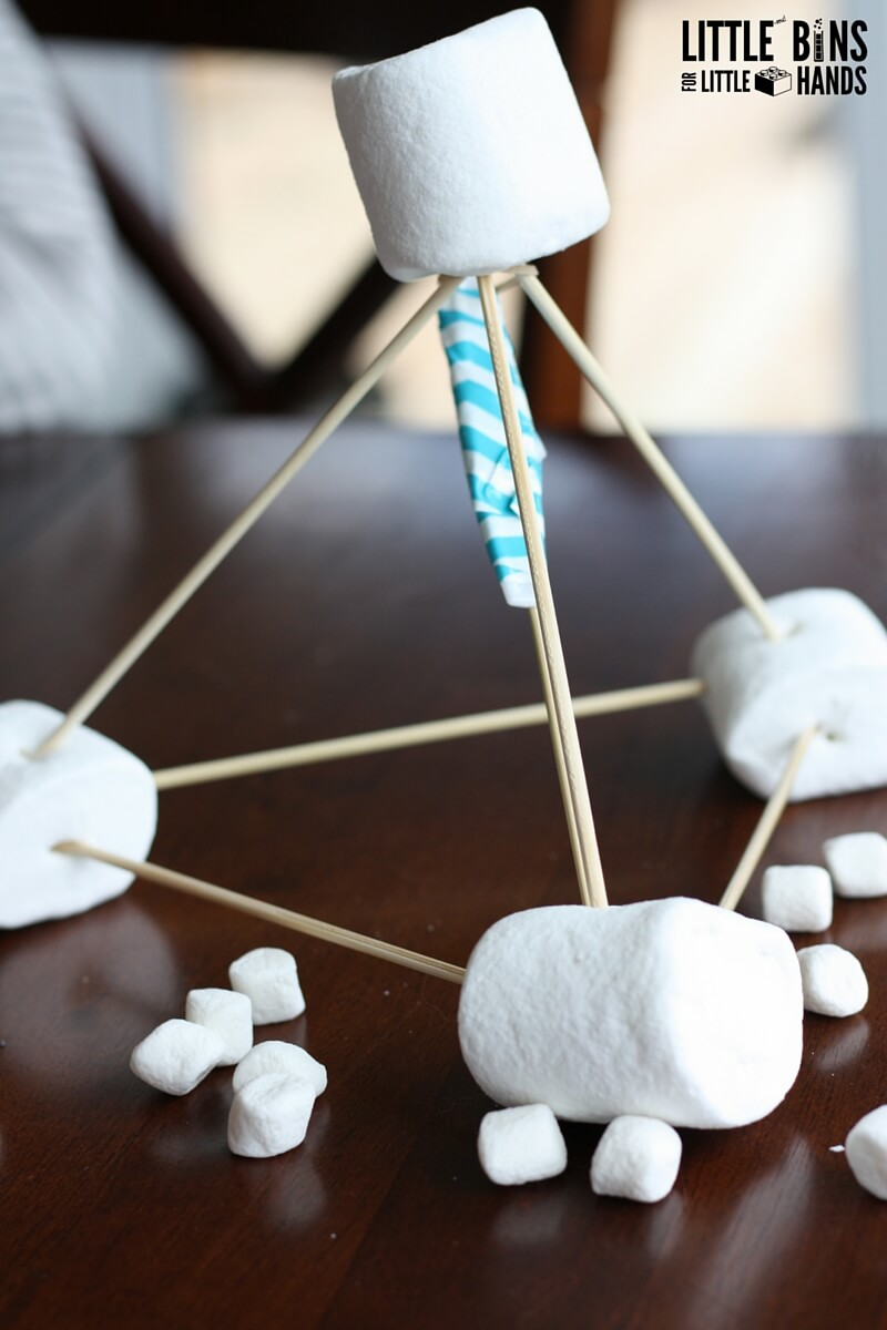 Marshmallow Catapult Activity For Kids Stem