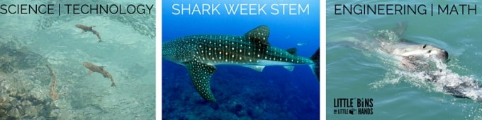 SHARK WEEK STEM
