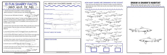 Shark Week Printable Pages for Download