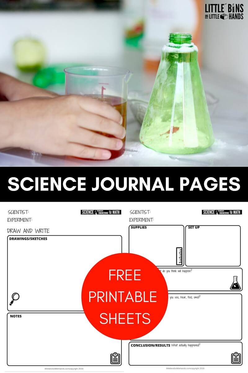 Free Science Worksheets And Printable Science Journal Pages