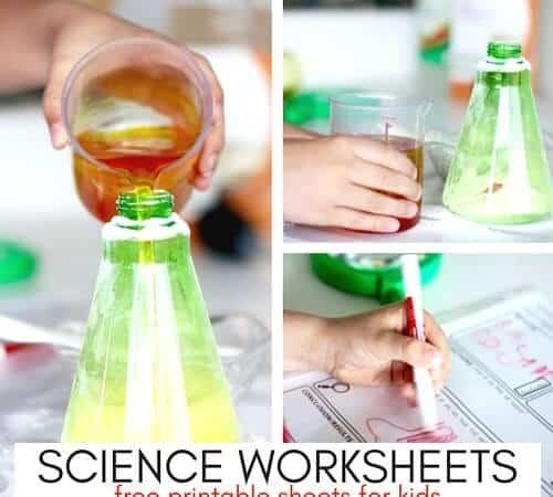 Printable Kids Science Worksheets