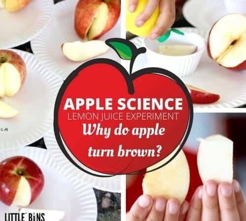 Apple Science Lemon Juice Experiment