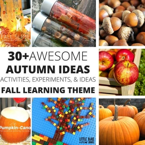 Fall STEM Ideas for Autumn Science Activities