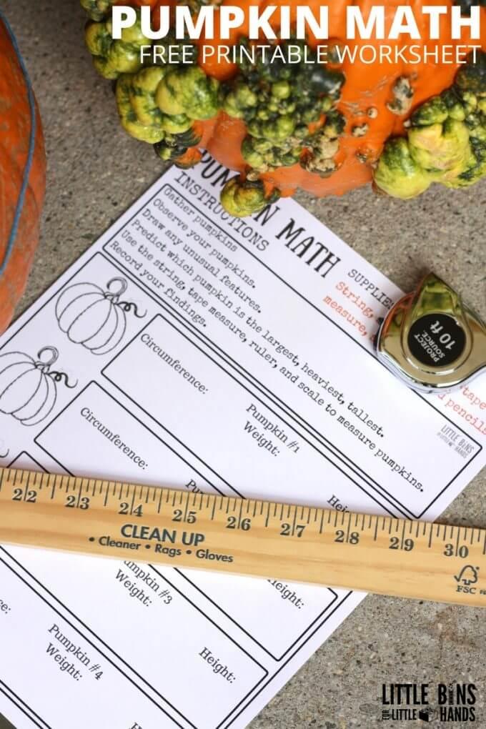 Measuring Pumpkins Math Activity Circumference Weight Height