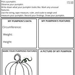 Free Pumpkin Math Worksheet Page 2