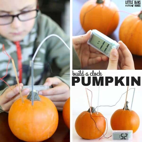 Pumpkin clock or potato clock for thanksgiving science activities