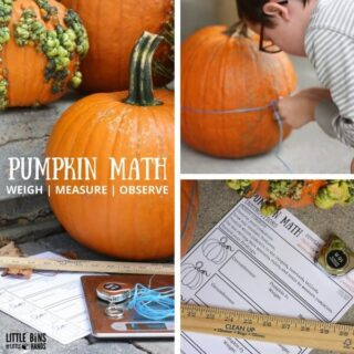 pumpkin-math-measuring-activity-for-kids-weigh-measure-observe-free-printable