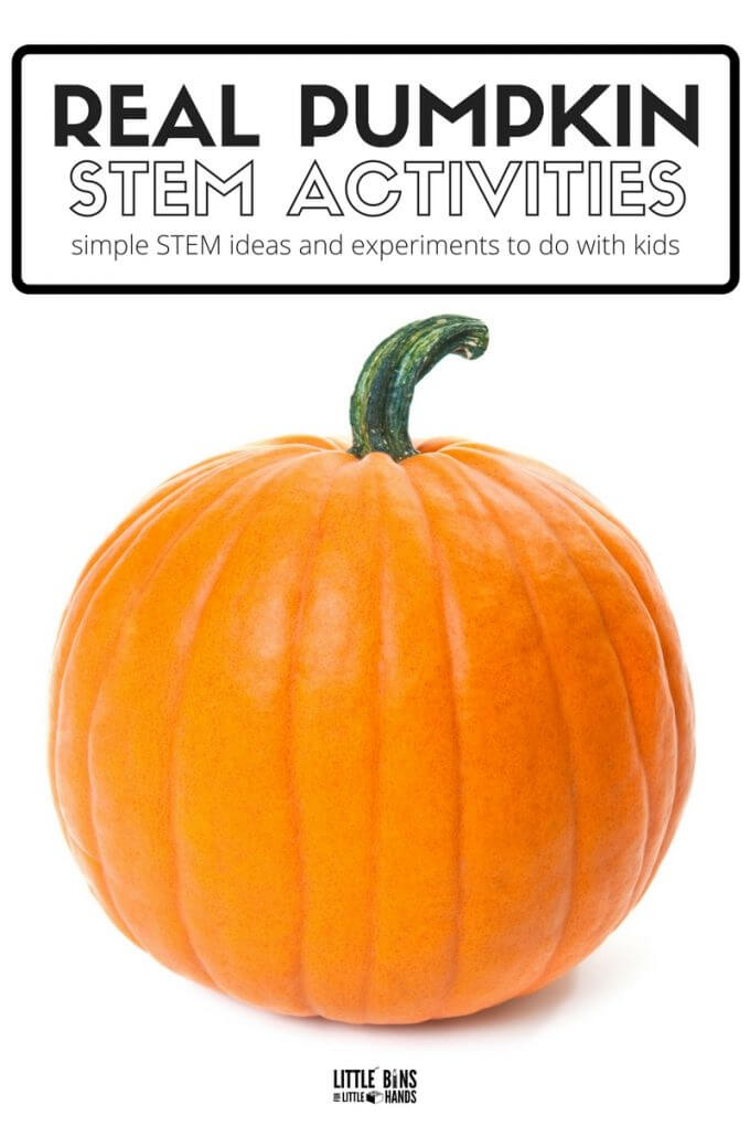 Real Pumpkin STEM Activities for Kids Fall Science