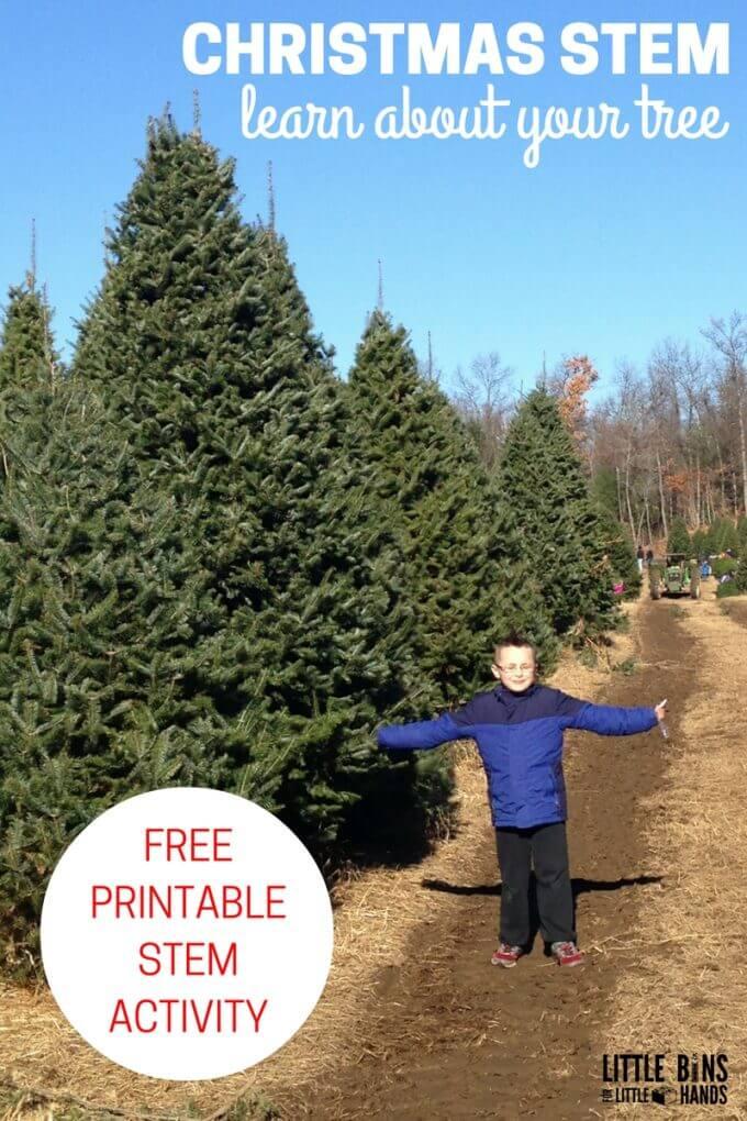 Christmas Tree STEM Activity with Free Printable