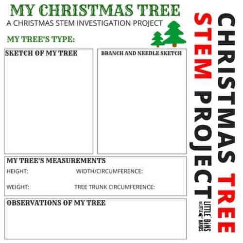 Science Facts Christmas: My Christmas Tree STEM Activity With Free Printable