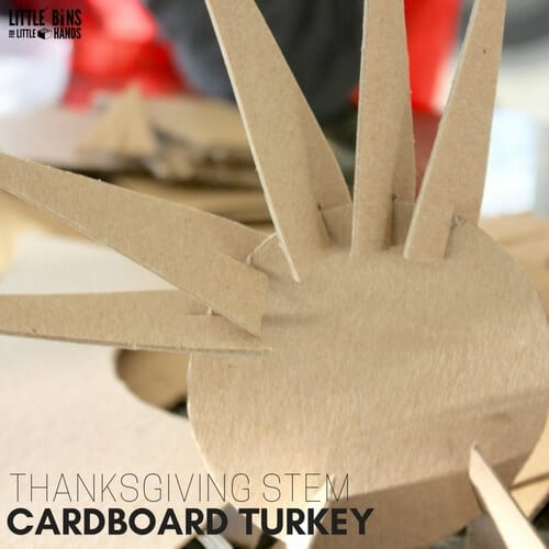 thanksgiving-stem-cardboard-turkey