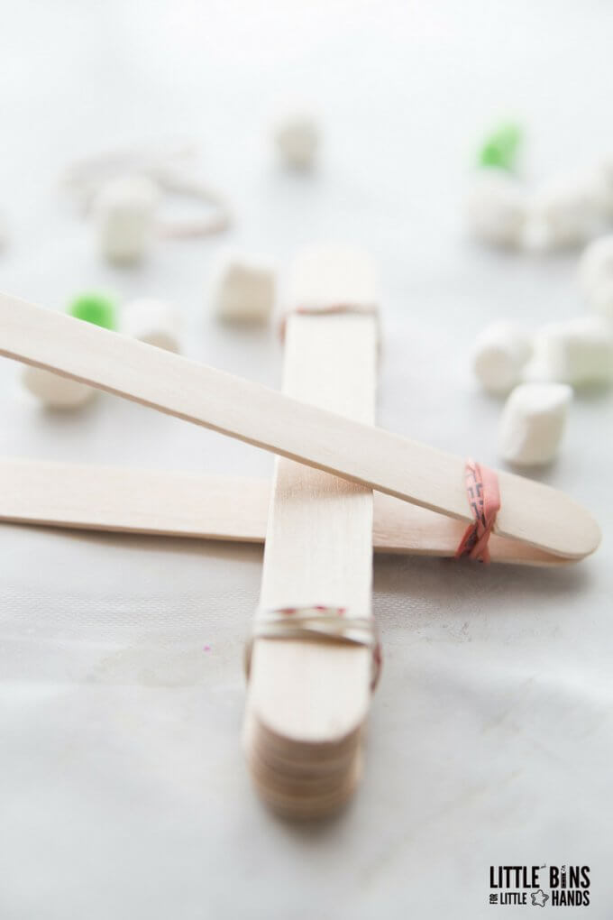 popsicle stick catapult stem activity