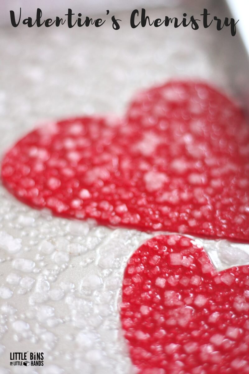 Growing Salt Crystal Hearts for Valentine's Day Science and