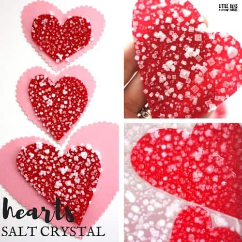 Growing Salt Crystals Hearts Chemistry Experiment With Valentines Day  Activity