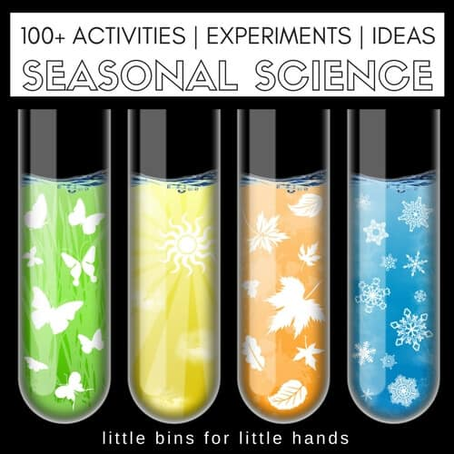 seasonal-science-experiments