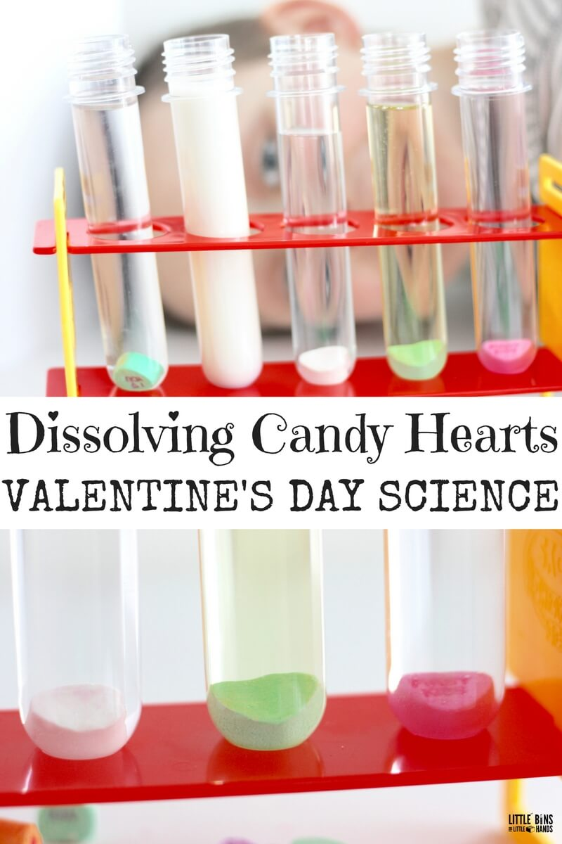 Dissolving Candy Hearts Science Experiment for Valentine's Day