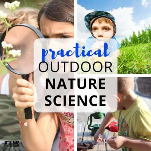 Stem Project Based Learning For Homeschool High School: Spring STEM Activities And Plant Science Activities For Kids