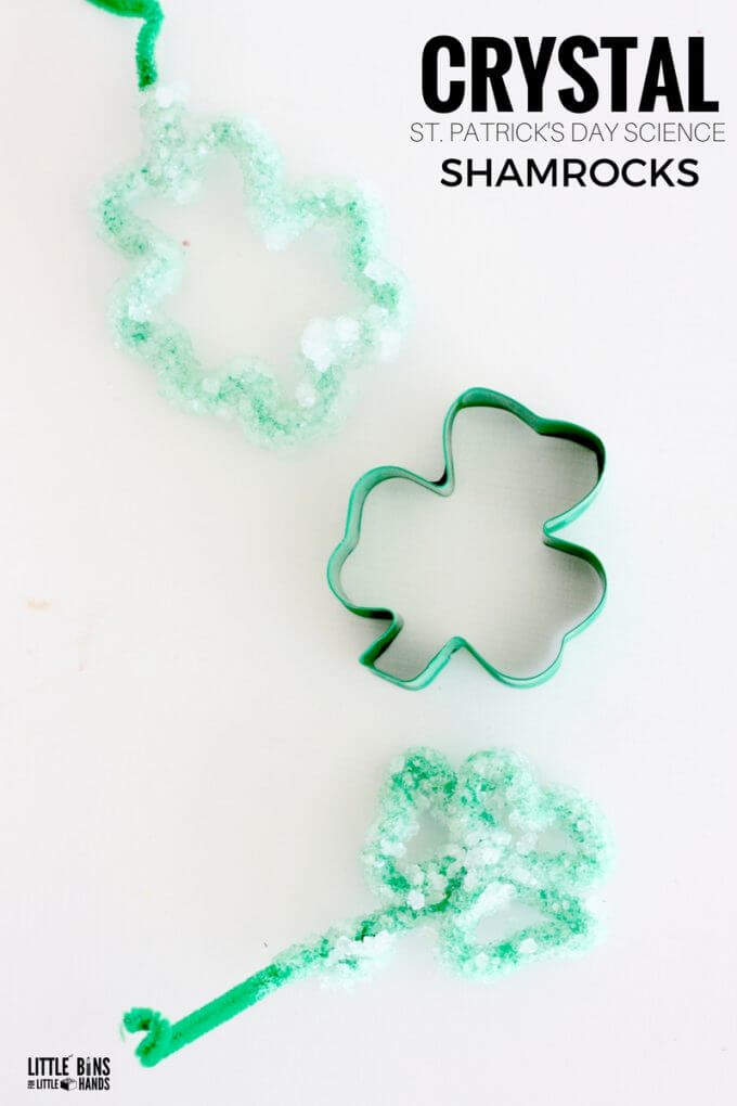 Grow crystal shamrocks for kids St. Patrick's Day science and STEM craft.