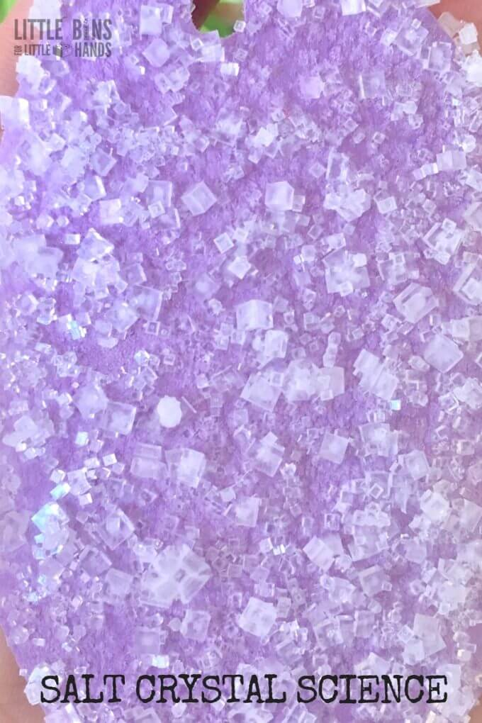 Salt crystals for science experiments and activities