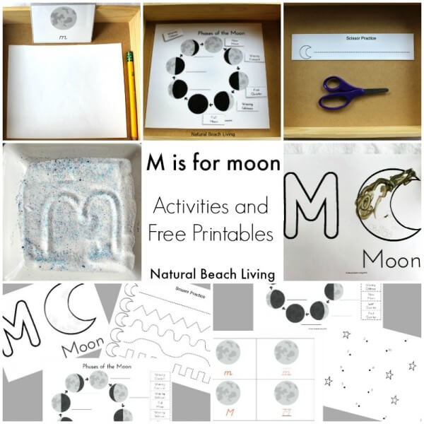 Preschool Montessori Science Activities And Ideas For Young Kids