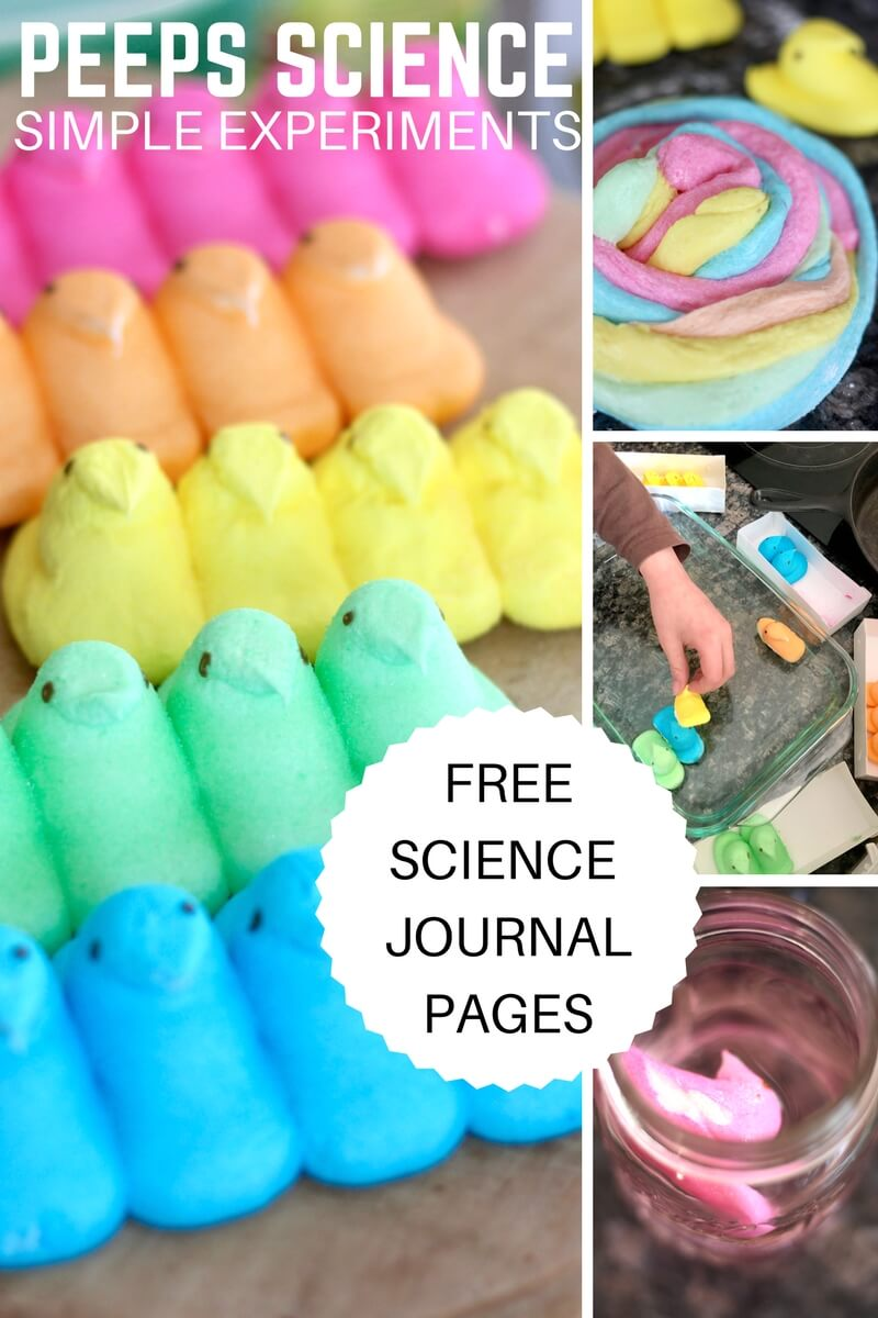 Peeps Science Experiments For kids