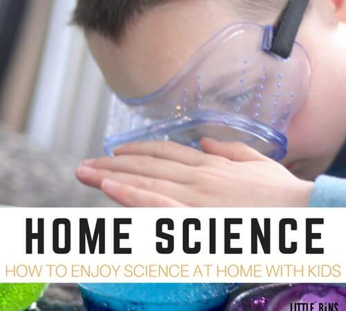 How To Enjoy Home Science Experiments and Activities with Zoey and Sassafras