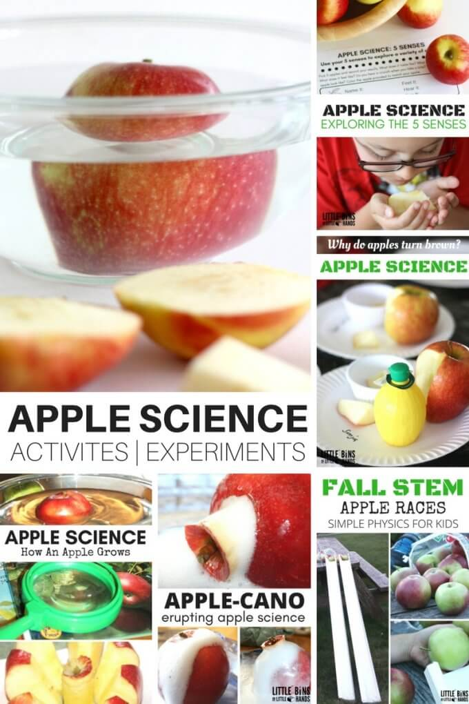 Apple science experiments for fall.