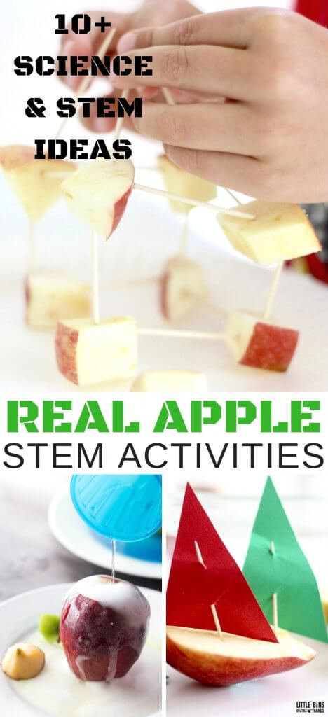 Real Apple STEM activities and science experiments for kids