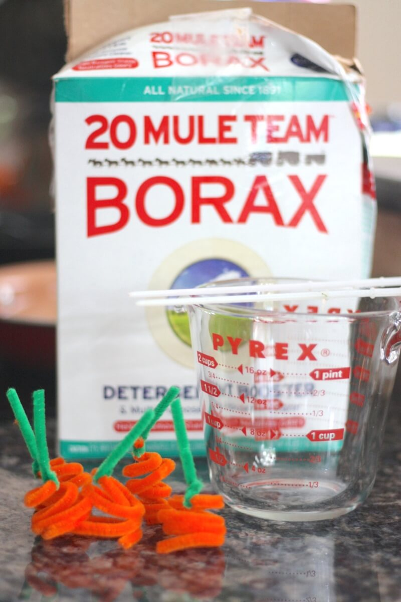 Pumpkin crystal science experiment growing crystals with borax powder and pipe cleaners