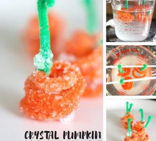 Crystal Pumpkin Borax Science Experiment {5 Little Pumpkins}