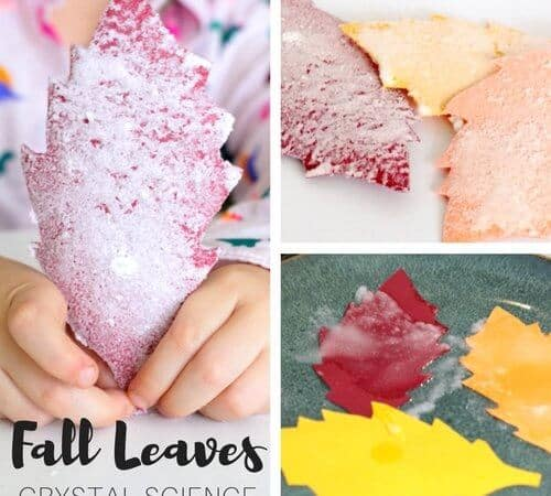 Salt Crystal Leaves Science Experiment and Fall STEM Activity for Kids