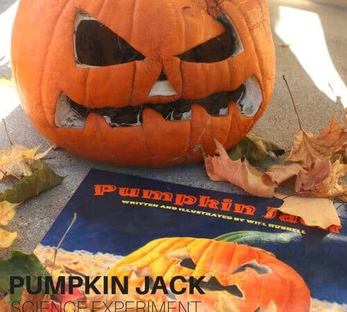 Pumpkin Jack Rotting Science Experiment
