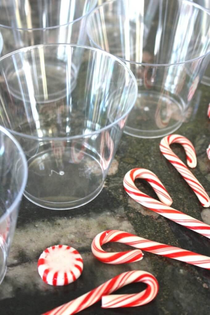 Dissolving candy canes Christmas science experiment supplies