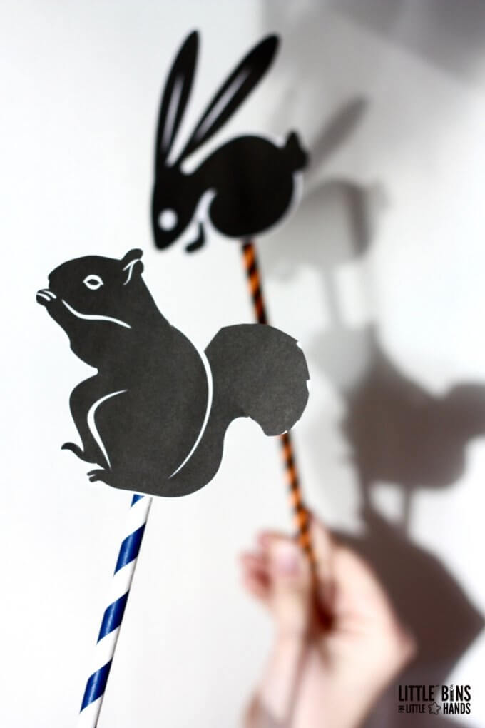 Playful Shadow Science Physics Activity