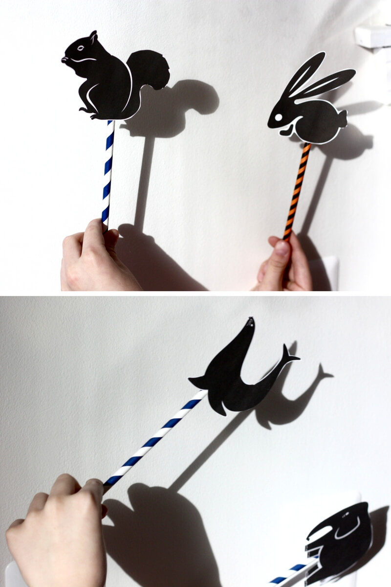 Shadow Science Physics Activity for Kids