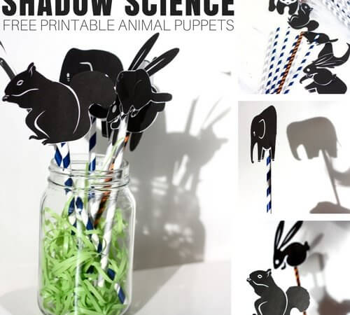 Shadow Science Physics Activity with Animal Silhouette Puppets (FREE Printable!)