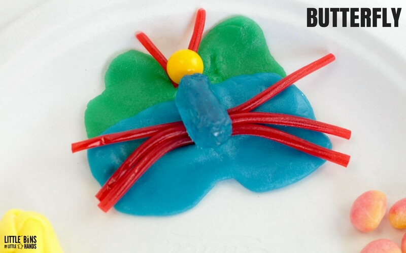 Edible Butterfly Life Cycle Science Activity Stage 4 adult