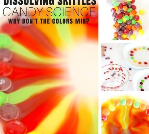 Skittles Science Activity for Candy Science Experiments with Kids
