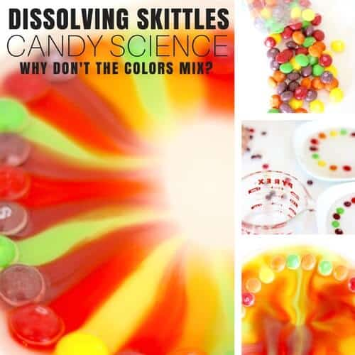 Skittles Science Activity for Awesome Candy Science Experiments!