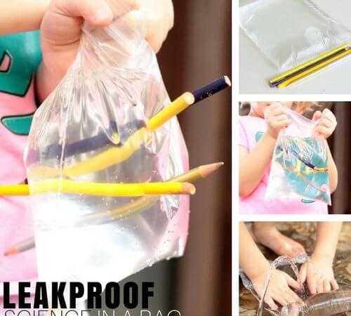 Leakproof Pencil Bag Science Experiment Kids Love!