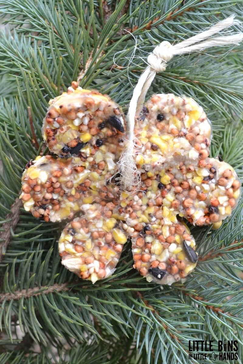 How To Make Birdseed Feeder Ornaments With Gelatin Kid Friendly