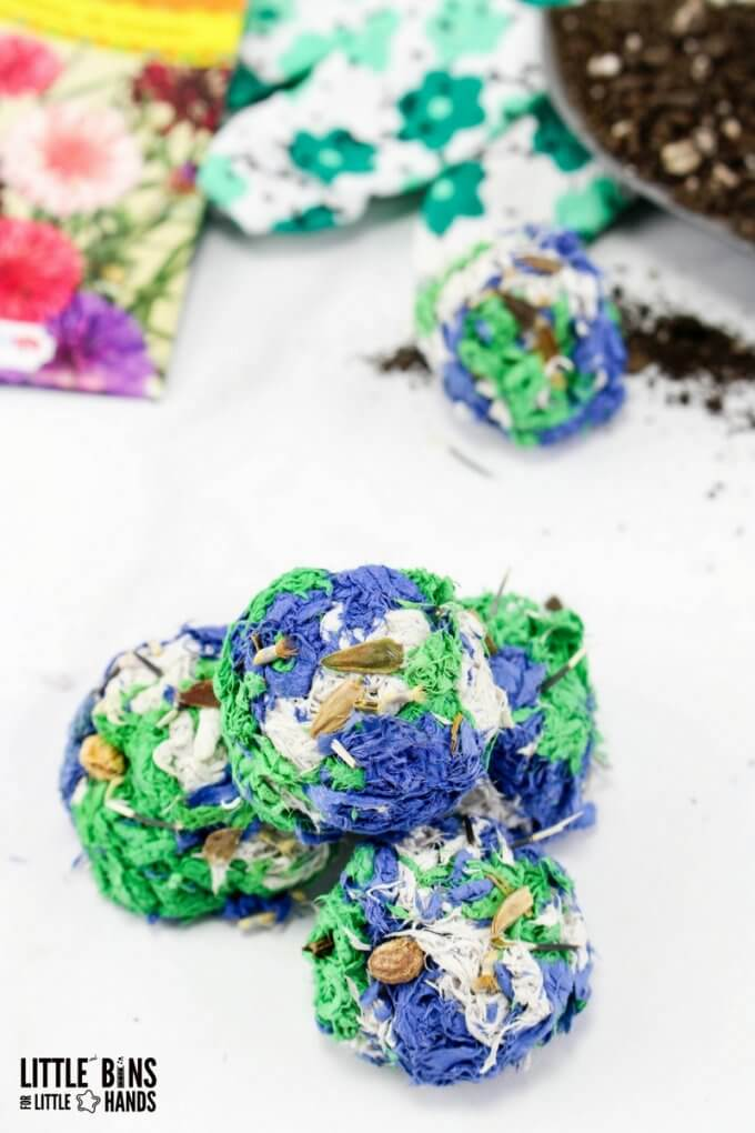 Earth Day Activity with Easy to Make Seed Bombs for Planting or Giving as Gifts